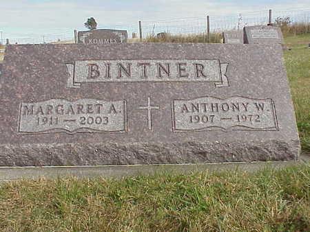 STUART BINTNER, MARGARET ANN - Audubon County, Iowa   MARGARET ANN STUART BINTNER