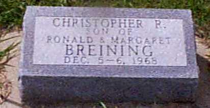 BREINING, CHRISTOPHER P - Audubon County, Iowa | CHRISTOPHER P BREINING