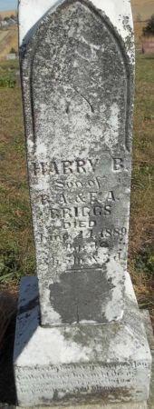 BRIGGS, HARRY B. - Audubon County, Iowa   HARRY B. BRIGGS
