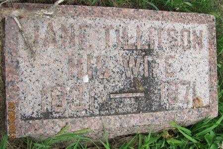 TILLITSON BROWN, JANE - Audubon County, Iowa | JANE TILLITSON BROWN