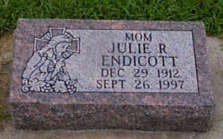 ENDICOTT, JULIE R - Audubon County, Iowa | JULIE R ENDICOTT