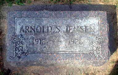 JENSEN, ARNOLD S. - Audubon County, Iowa | ARNOLD S. JENSEN