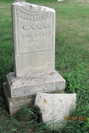 MEEK LEWIS, SARAH G. - Audubon County, Iowa | SARAH G. MEEK LEWIS