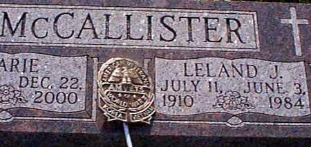 MCCALLISTER, LELAND J - Audubon County, Iowa | LELAND J MCCALLISTER
