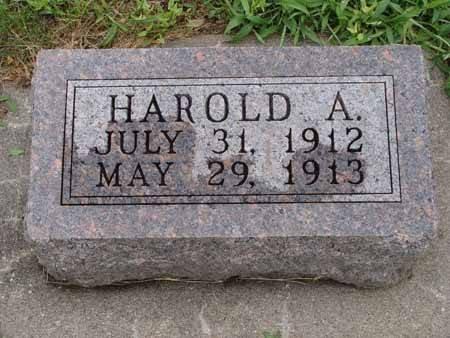 MUELLER, HAROLD A - Audubon County, Iowa | HAROLD A MUELLER