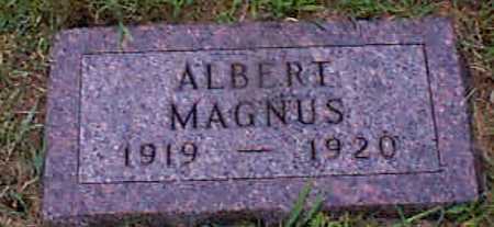 PETERSEN, ALBERT MAGNUS - Audubon County, Iowa | ALBERT MAGNUS PETERSEN