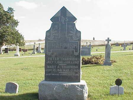 THIELEN THARNISH, MARY A. - Audubon County, Iowa | MARY A. THIELEN THARNISH