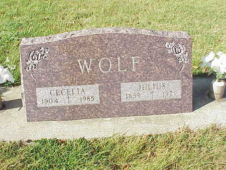 WOLF, JULIUS - Audubon County, Iowa | JULIUS WOLF