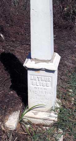 BLISS, ARTHUR - Benton County, Iowa   ARTHUR BLISS