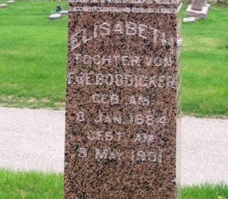 BODDICKER, ELISABETH - Benton County, Iowa | ELISABETH BODDICKER
