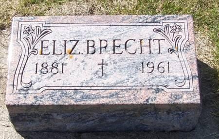 BRECHT, ELIZABETH - Benton County, Iowa | ELIZABETH BRECHT