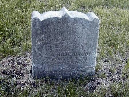 BRODY, CHESTER - Benton County, Iowa | CHESTER BRODY