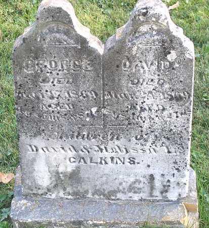 CALKINS, GEORGE - Benton County, Iowa | GEORGE CALKINS
