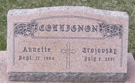 COLLIGNON, ANNETTE - Benton County, Iowa | ANNETTE COLLIGNON
