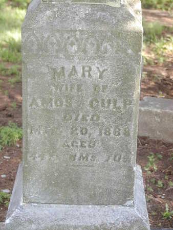 CULP, MARY - Benton County, Iowa | MARY CULP
