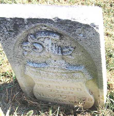 DODD, THO'S M. - Benton County, Iowa | THO'S M. DODD