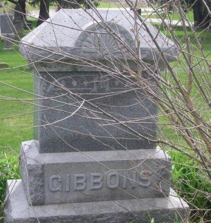 GIBBONS, AUSTIN FAMILY STONE - Benton County, Iowa   AUSTIN FAMILY STONE GIBBONS