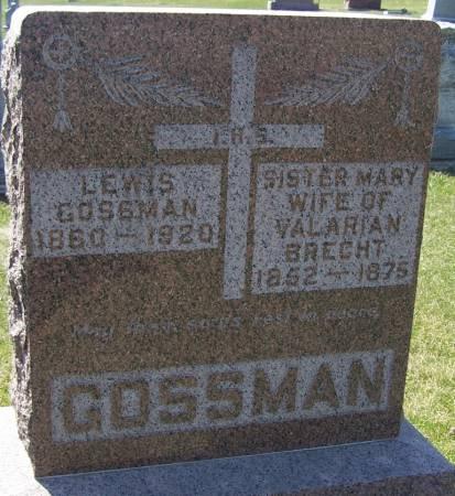 GROSSMAN, LEWIS - Benton County, Iowa | LEWIS GROSSMAN