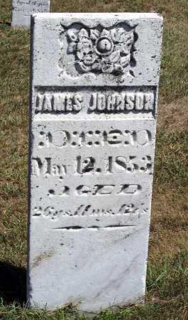 JOHNSON, JAMES - Benton County, Iowa | JAMES JOHNSON
