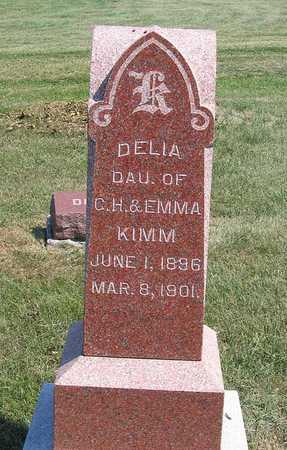 KIMM, DELIA - Benton County, Iowa | DELIA KIMM