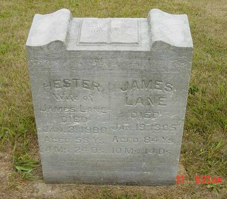 ENGLEDOW LANE, HESTER - Benton County, Iowa | HESTER ENGLEDOW LANE