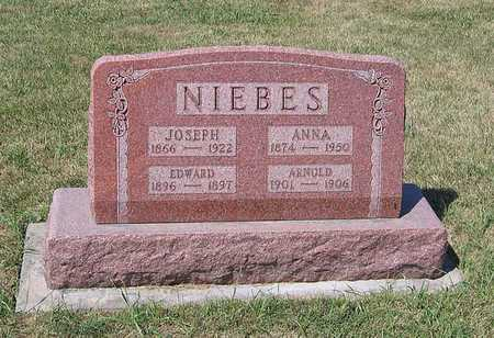 NIEBES, ARNOLD - Benton County, Iowa | ARNOLD NIEBES