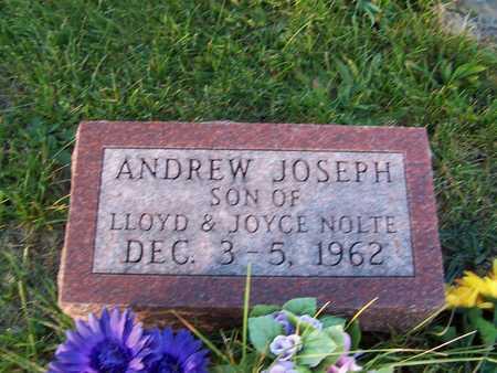 NOLTE, ANDREW JOSEPH - Benton County, Iowa | ANDREW JOSEPH NOLTE