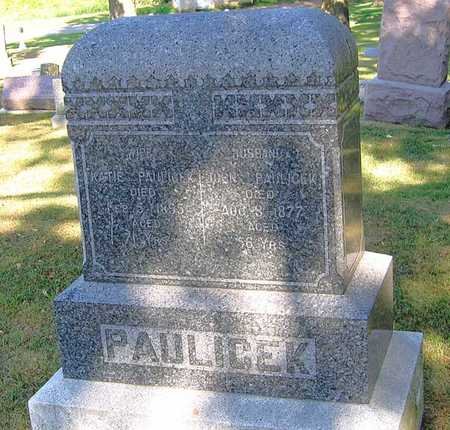 PAULICEK, JOHN - Benton County, Iowa | JOHN PAULICEK