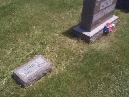 ROOT, CARL L. - Benton County, Iowa | CARL L. ROOT