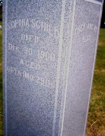 SCHILD, SOPHIA - Benton County, Iowa   SOPHIA SCHILD