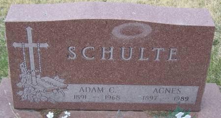 SCHULTE, ADAM C - Benton County, Iowa | ADAM C SCHULTE