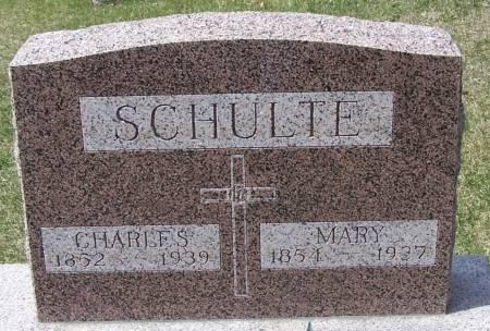 SCHULTE, CHARLES - Benton County, Iowa | CHARLES SCHULTE