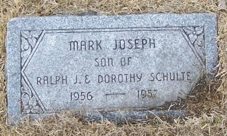 SCHULTE, MARK JOSEPH - Benton County, Iowa | MARK JOSEPH SCHULTE