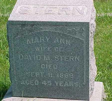 STERN, MARY ANN - Benton County, Iowa | MARY ANN STERN