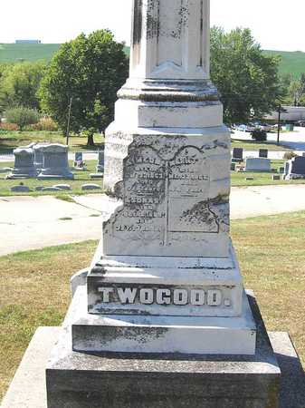TWOGOOD, ESDRAS - Benton County, Iowa | ESDRAS TWOGOOD