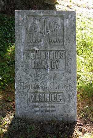 VANNICE, CORNELIUS HARVEY - Benton County, Iowa | CORNELIUS HARVEY VANNICE