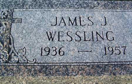 WESSLING, JAMES - Benton County, Iowa   JAMES WESSLING
