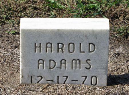 ADAMS, HAROLD - Black Hawk County, Iowa | HAROLD ADAMS