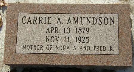 AMUNDSON, CARRIE A. - Black Hawk County, Iowa | CARRIE A. AMUNDSON