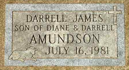 AMUNDSON, DARRELL JAMES - Black Hawk County, Iowa | DARRELL JAMES AMUNDSON