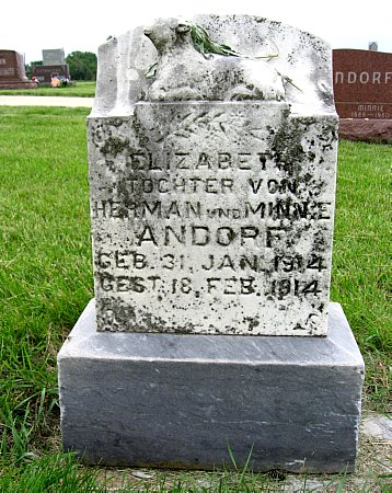 ANDORF, ELIZABETH - Black Hawk County, Iowa | ELIZABETH ANDORF