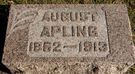 APLING, AUGUST - Black Hawk County, Iowa | AUGUST APLING