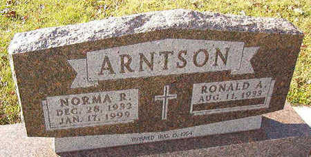 ARNTSON, RONALD A. - Black Hawk County, Iowa   RONALD A. ARNTSON