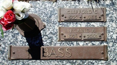 BASS, CLIFFORD C. - Black Hawk County, Iowa | CLIFFORD C. BASS