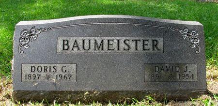 BAUMEISTER, DAVID J. - Black Hawk County, Iowa | DAVID J. BAUMEISTER