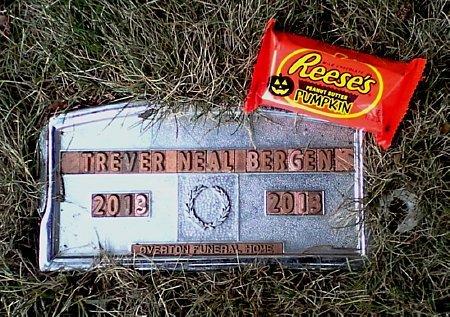 BERGEN, TREVER NEAL - Black Hawk County, Iowa   TREVER NEAL BERGEN