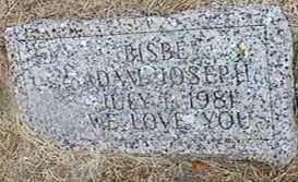 BISBE, ADAM JOSEPH - Black Hawk County, Iowa   ADAM JOSEPH BISBE