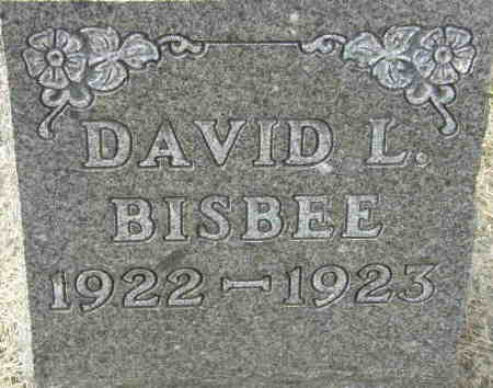 BISBEE, DAVID L. - Black Hawk County, Iowa | DAVID L. BISBEE