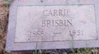 BRISBIN, CARRIE - Black Hawk County, Iowa | CARRIE BRISBIN