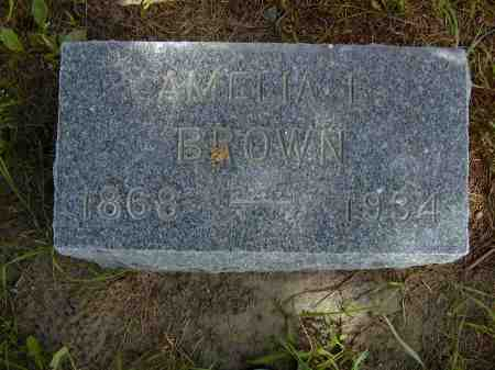 BROWN, AMELIA L. - Black Hawk County, Iowa | AMELIA L. BROWN